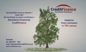 Rklama pieniądze na drzewie 2. 300x180 - BIZNESPLAN