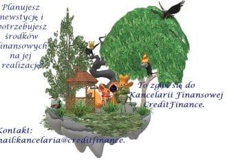 creditfinance_nowyrok